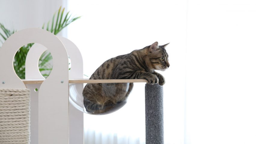 터프트+포, 고양이를 위한 궁극의 놀이터 출시