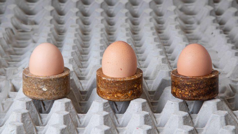 유통기한 지난 달걀, 친환경 테이블웨어로 재탄생